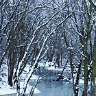 The Winter Stream  by lorilee