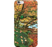 AUTUMN ALONG LITTLE RIVER iPhone Case/Skin
