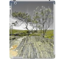 Moonee Beach Nature Reserve iPad Case/Skin
