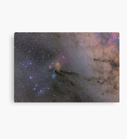 The Scorpion's Head Canvas Print