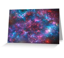 Wild cosmos 2 Greeting Card
