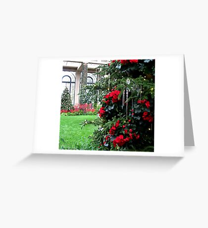 Begonia Christmas Tree in the Conservatory Greeting Card