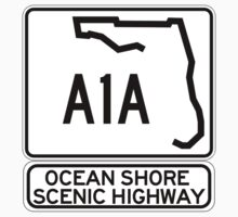 A1A - Ocean Shore Scenic Highway by IntWanderer