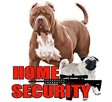 Pit bull pug home security  Photographic Print