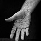 Hand by Alex Fricke