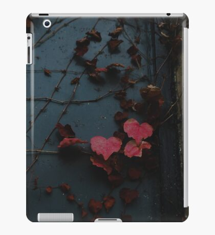 A Light within Darkness iPad Case/Skin