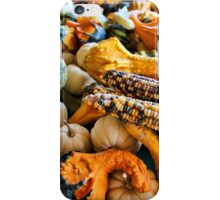 Corn and Gourds iPhone Case/Skin