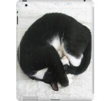 Cat - Black & White Moggie iPad Case/Skin