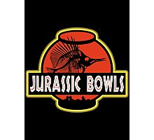 Jurassic Bowls Photographic Print