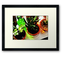 Glass Light and Bottle Green Framed Print