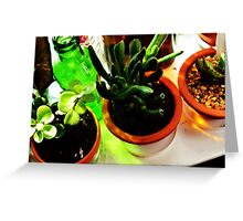 Glass Light and Bottle Green Greeting Card