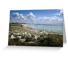 The Beauty of St. Andrews Bay Greeting Card