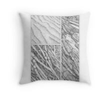 Sand, seaweed and stone Throw Pillow