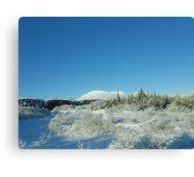 Icelandic Landscape Canvas Print