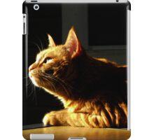 Celine- SANDRAXVMS iPad Case/Skin