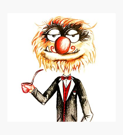 Suave Animal The Muppets  Photographic Print