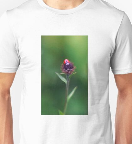 Ladybird Ready For Lift Off Unisex T-Shirt