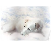 K9 on Cloud 9 Poster
