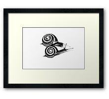 Snail Duo Framed Print