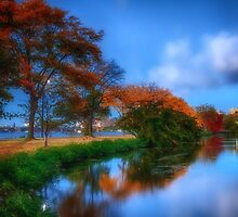 Summer and Fall darken the Lagoon by Owed To Nature
