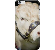 Prize Cow at a agriculture show iPhone Case/Skin