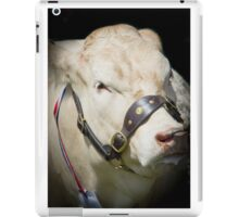 Prize Cow at a agriculture show iPad Case/Skin