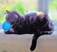 Crystal ball cat throw pillow by sarnia2