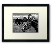 Western Montage  Framed Print