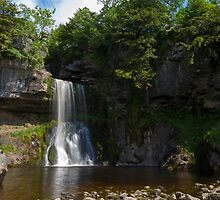 Idyllic Yorkshire dales  by chris2766
