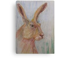 'Mad as a March Hare' Canvas Print