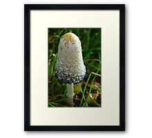 Who Knows Me? Framed Print