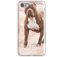 Hexin the pit bull  iPhone Case/Skin