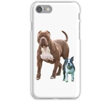 Pit bull Boston terrier iPhone Case/Skin