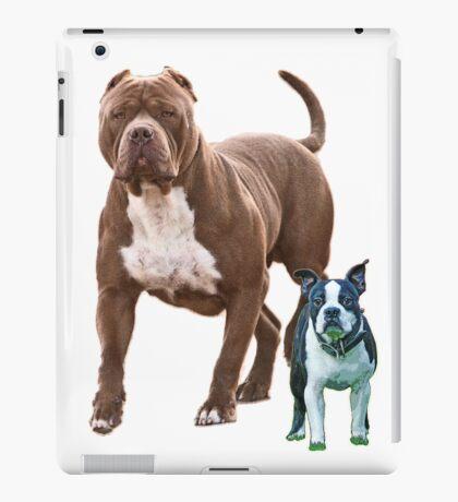 Pit bull Boston terrier iPad Case/Skin