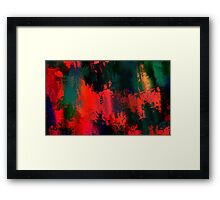 BWL 080 Framed Print