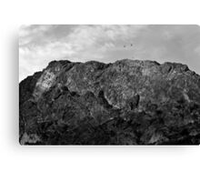 Vultures on the mountain Canvas Print
