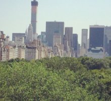 Central Park, from the Met Sticker