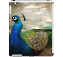 At rest iPad Case/Skin