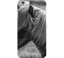 Icelandic Horse iPhone Case/Skin