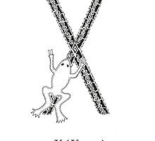 X is for Xenopus by Cat-Igrun