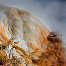 Minerva Terrace at Mammoth Hot Springs Yellowstone by Martin Lawrence