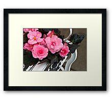 Last Of Summer  -  Begonias On Bench  Framed Print