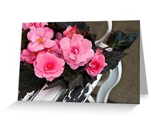Last Of Summer  -  Begonias On Bench  Greeting Card