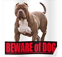 Beware of dog pit bull Poster