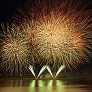 Fireworks by Philippe Widling