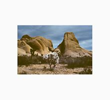 Desert Rocks & Cholla Bush, Joshua Tree Monument, CA Unisex T-Shirt