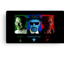 The Rise and Fall of Walter White Canvas Print