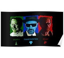 The Rise and Fall of Walter White Poster