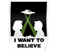 MSR I Want To Believe Poster