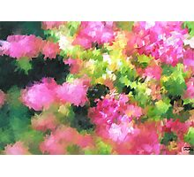 abstract nature bee flowers garden pink green Photographic Print